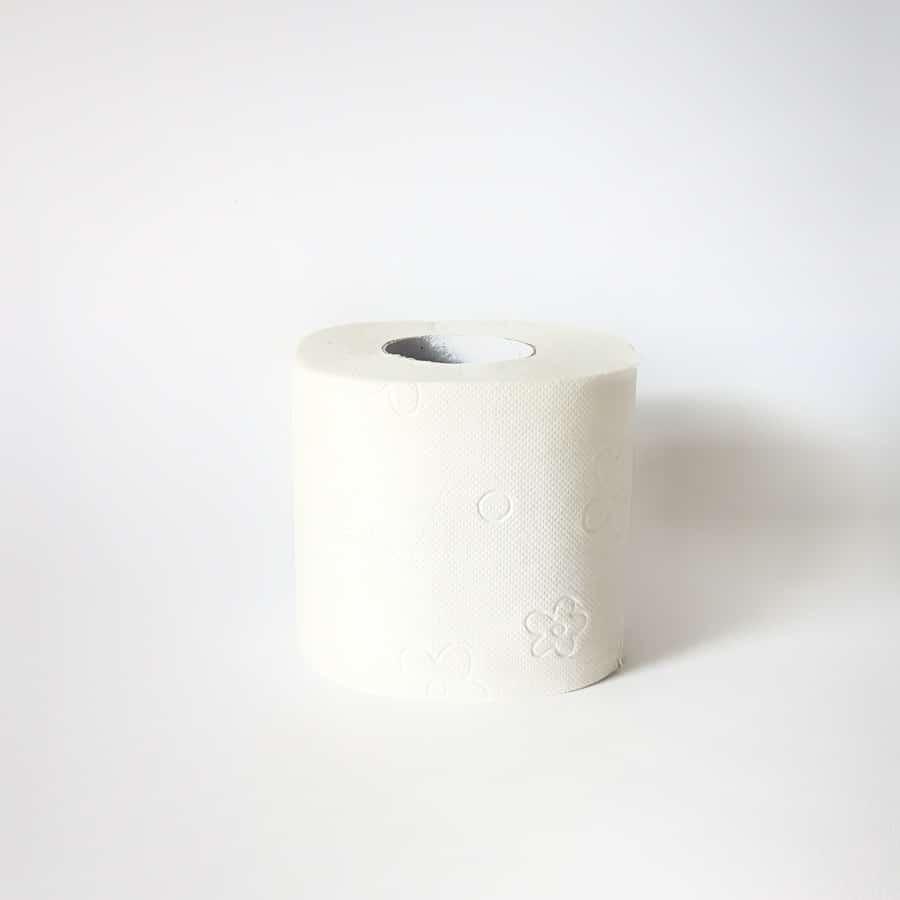 WC papir Paloma v kartonu (1 rolica)