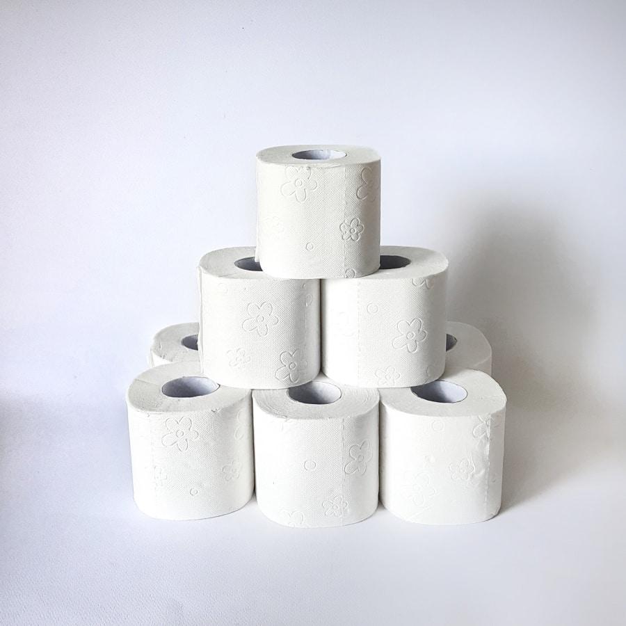 WC papir Paloma v kartonu (24 rolic)